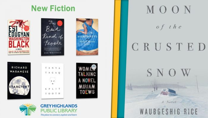 New Fiction Titles: Washington Black, The Best Kind of People, Machine Without Horses, Starlight, Split Tooth, Women Talking, Moon of the Crusted Snow